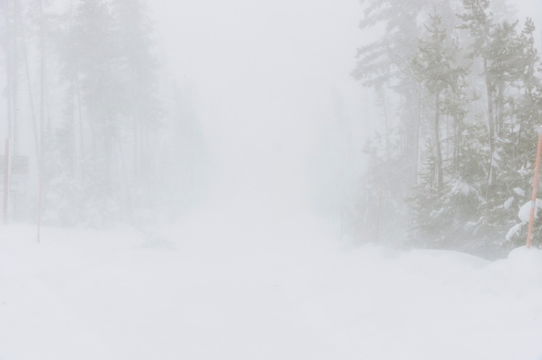 Near_white_out_conditions_(23401161113).jpg